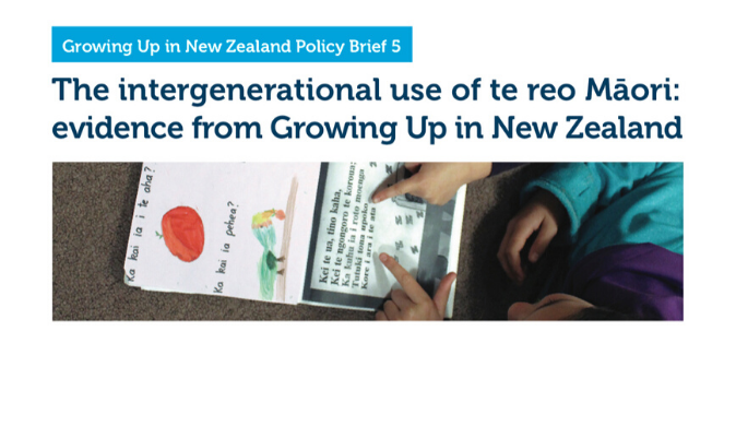policy_brief_5_te_reo_v2.png